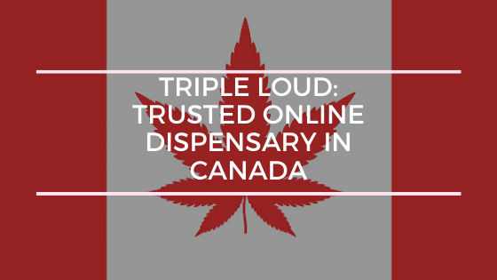 Triple Loud: Trusted Online Dispensary In Canada