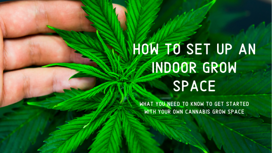 How To Start An Indoor Grow Space