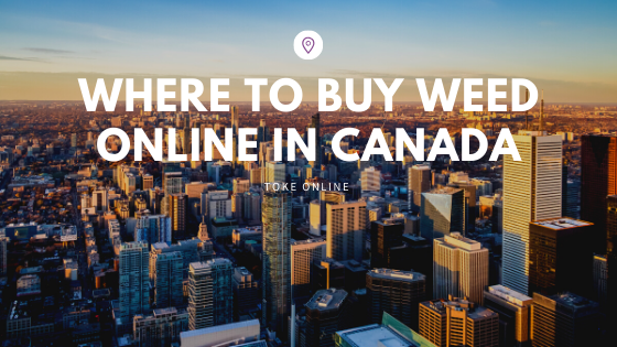 Where to Buy Weed Online in Canada