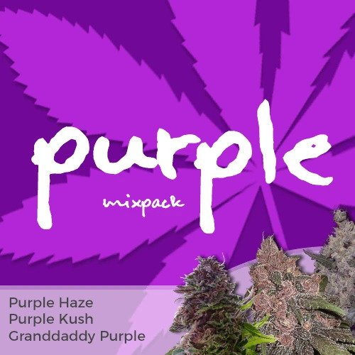 Purple Weed Mix