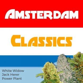 Amsterdam Mix