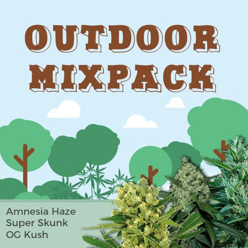 Outdoor Mix