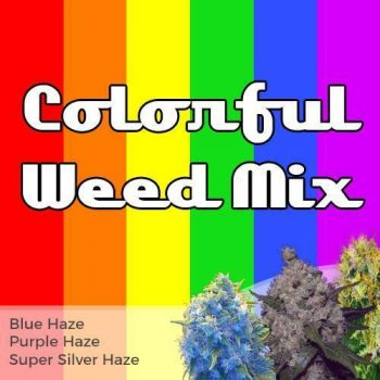 Colorful Weed Mix