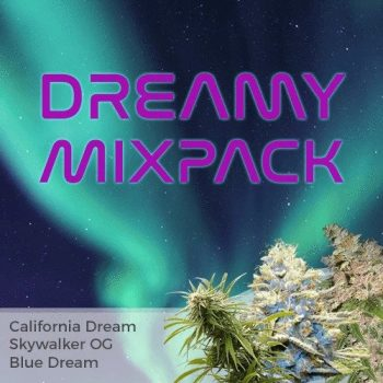 Dream Mix