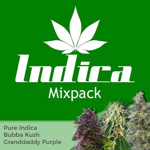 Indica Mix